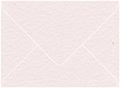 Rosa Arturo Outer #7 Envelope 5 1/2 x 7 1/2 - 50/Pk