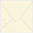 Milkweed Square Envelope 6 1/2 x 6 1/2 - 50/Pk