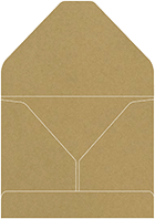 Document Portfolios<br>Style B<br>9 x 12