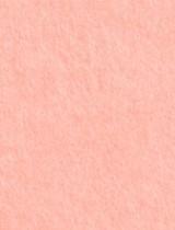 Gmund #11 Rosa 11 x 17 Text 28 lb - 50/Pk