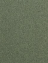 Gmund #16 Seeding Green 11 x 17 Text 28 lb - 50/Pk