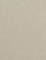 Gmund #25 Light Moss 11 x 17 Text 28 lb - 50/Pk