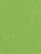 Gmund #32 Leaf Green 11 x 17 Text 28 lb - 50/Pk