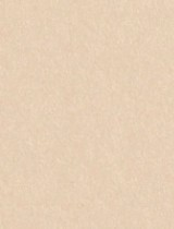 Gmund #84 Chardonnay 11 x 17 Text 32 lb - 50/Pk