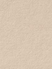 Gmund #85 Timberwolf Gray 11 x 17 Text 32 lb - 50/Pk