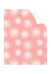 Dandelion White/Ginger Text 8 1/2 x 11 - 25/Pk
