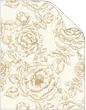 Rose Antique Gold Cover 8 1/2 x 11 - 25/Pk
